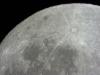 Mond T3 19